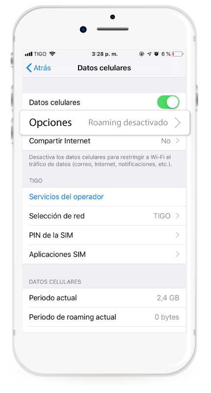 Roaming-nacional-iphone-opciones-roaming-desactivado.png